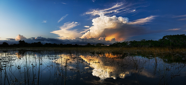 Courtesy Brian Call, Everglades NPS